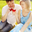 Couple in meadow with wine — Stock Photo #10657674