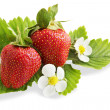 Ripe juicy strawberries, isolation — Stock Photo #10657737