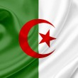 Algeria waving flag — Stock Photo #10223181