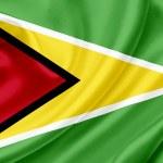 Guyana waving flag — Stock Photo #10224570