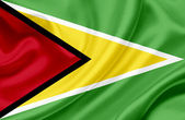 Guyana waving flag — Stock Photo