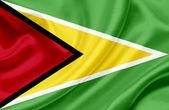 Guyana waving flag — Stock Photo