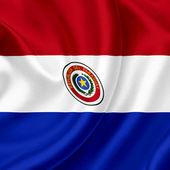 Paraguay waving flag — Stock Photo