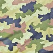 Army texture background — Stock Photo #10550199