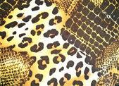 Animal skin pattern — Stock Photo