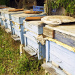 Stock Photo: Wooden beehive
