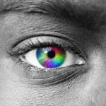 Multicolored human eye macro shot — Stock Photo #8527055