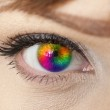 Colorful woman eye close-up — Stock Photo #8527073