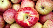 Apple background close-up — Stock Photo