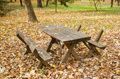 Wooden picnic table and bench in autumn forest — ストック写真