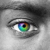 Colorful eye macro shot — Stock Photo