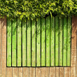 Royalty-Free Stock Photo: Green fence background