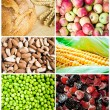 Colorful healthy food collage — Stock Photo