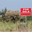 Land for sale sign in empty field — Stock Photo