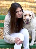 Bella ragazza e il suo cane seduto sulla panchina nel parco d'autunno — Foto Stock