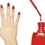 Manicure set - Beautiful red manicured woman hand and nail polis — Stock Photo #8672222
