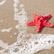 Red starfish and sea wave on sandy tropical beach — Stock Photo #8702652