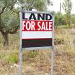 Stock Photo: Land for sale concept