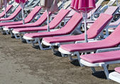 Pink sunbeds at beach — Stock Photo