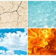 Four nature elements collage — Stock Photo #8776320