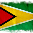 Guyana grunge flag — Stock Photo