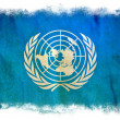 United Nations grunge flag — Stock Photo #8976098
