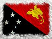 Papua New Guinea grunge flag — Stock Photo