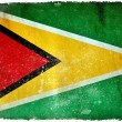 Guyana grunge flag — Stock Photo #9186389