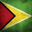 Royalty-Free Stock Photo: Grunge flag of Guyana
