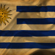 Stock Photo: Uruguay waving flag