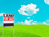 """""""LAND FOR SALE SIGN"""" on empty meadow - Real estate conceptual im — Stock Photo"""