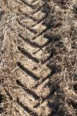 Trattore sentiero closeup — Foto Stock