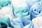 Blue roses — Stock Photo