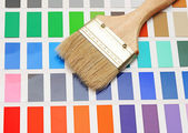 Color palette and brush — Stock Photo