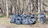 Many black garbage bags at curb — Stockfoto