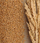 Wheat on sacking background — Stock Photo
