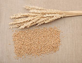 Wheat in burlap sack — Stock Photo