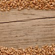 Stock Photo: Wheat frame on wood background