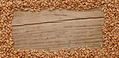 Wheat frame on the wood background — Stock Photo