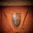 Stock Photo: Middle age metallic shield and two swords on wall