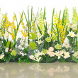 Floral background. Spring flowers background — Stock Photo
