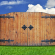 Vintage wooden door in the nature - Stockfoto