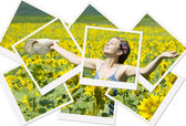 Summer photo collage — Stock Photo