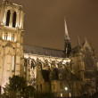 Notre Dame at night, Paris, France — Stock Photo #9537729