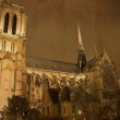 Notre Dame at night, Paris, France — Stock Photo #9537734