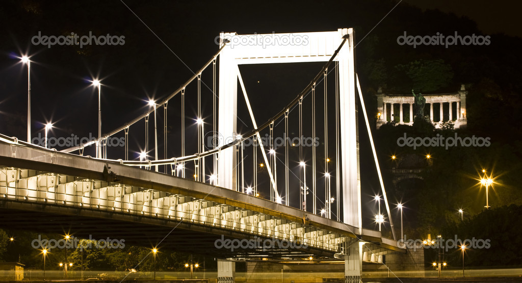 Elisabeth bridge at night in Budapest, Hungary — Stock fotografie #9537792