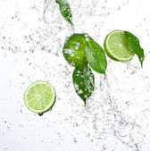 Fresh limes with water splash — Stock Photo