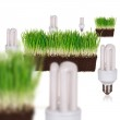 Light bulb in green ecological concept — Stock Photo #8867796