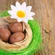 Small nest with eggs on wood — Stockfoto