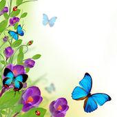 Beautiful floral design — Stock Photo